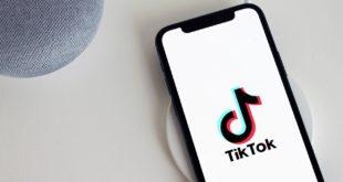 Download TikTok Videos